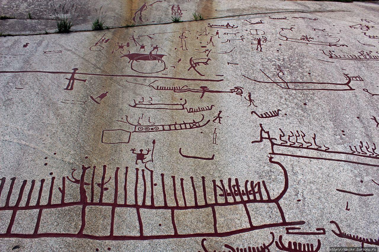 Жизнь и верования людей бронзового века на каменных рельефах
