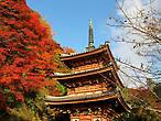 В саду храма Мимуротодзи, Киото