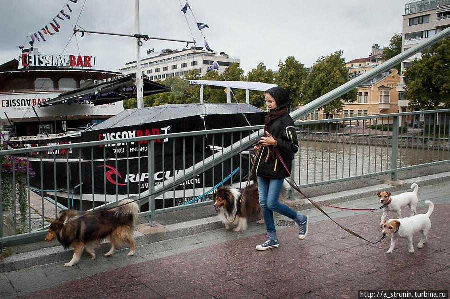 Там, где жизнь — не война Турку, Финляндия