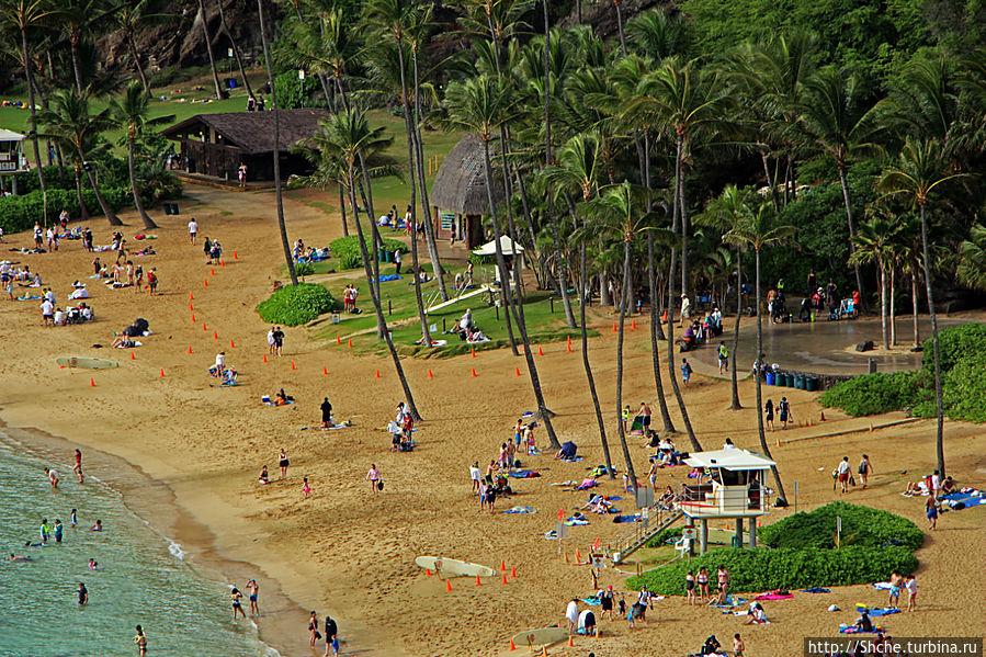 пляж полностью оборудован: прокат масок, переодевалки, душевые, спасатели, сувенирные магазины. Нет проката лежаков