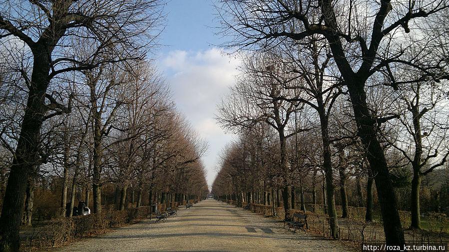 дорога от зоопарка ко Дворцу