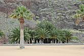 Пляж Playa de las Teresitas, знаменитый своим жёлтым песком.