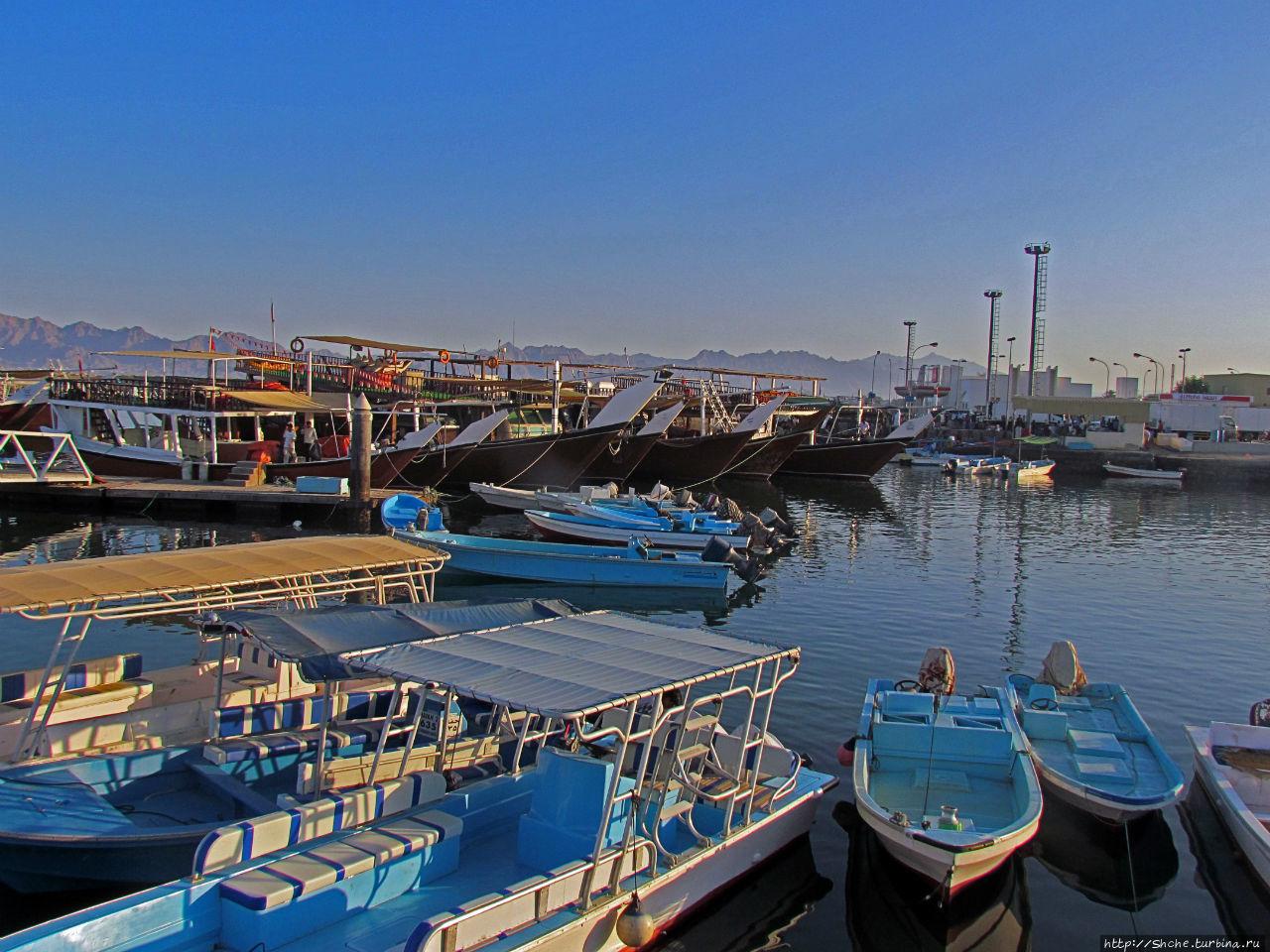 когда хороший улов, здесь разворачивается рыбный рынок прямо у причала, но в тот день рынка не было... видимо с уловом не подфартило, не думаю, что это мы задержались в море, и кто-то успел все раскупить Дибба-Аль-Байя, Оман