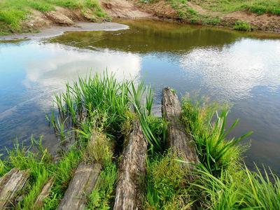 У брода  видны  бревнышки,  остатки  видать  когда-то  существовавшего здесь  мостика.
