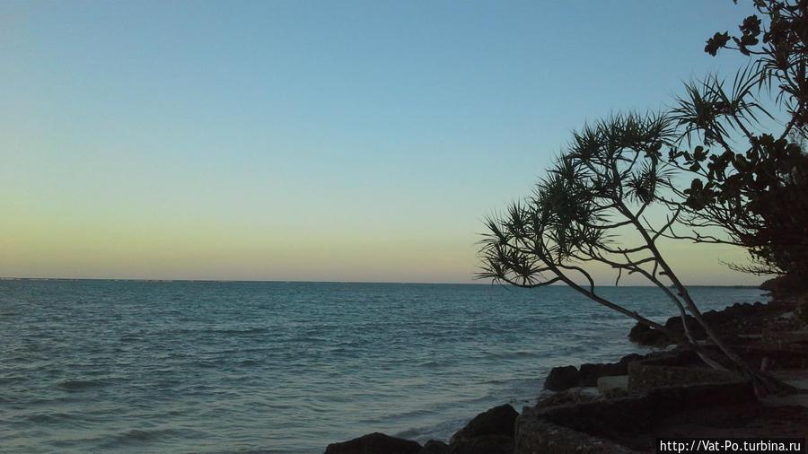 Океан у пляжа отеля.