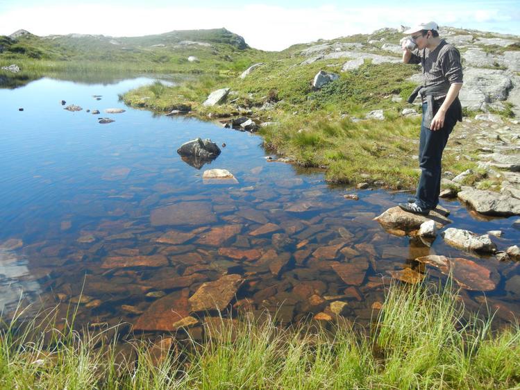 Норвегия... Экология...