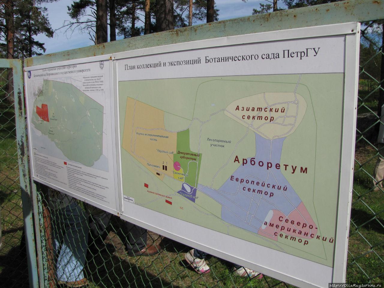 Карта территории