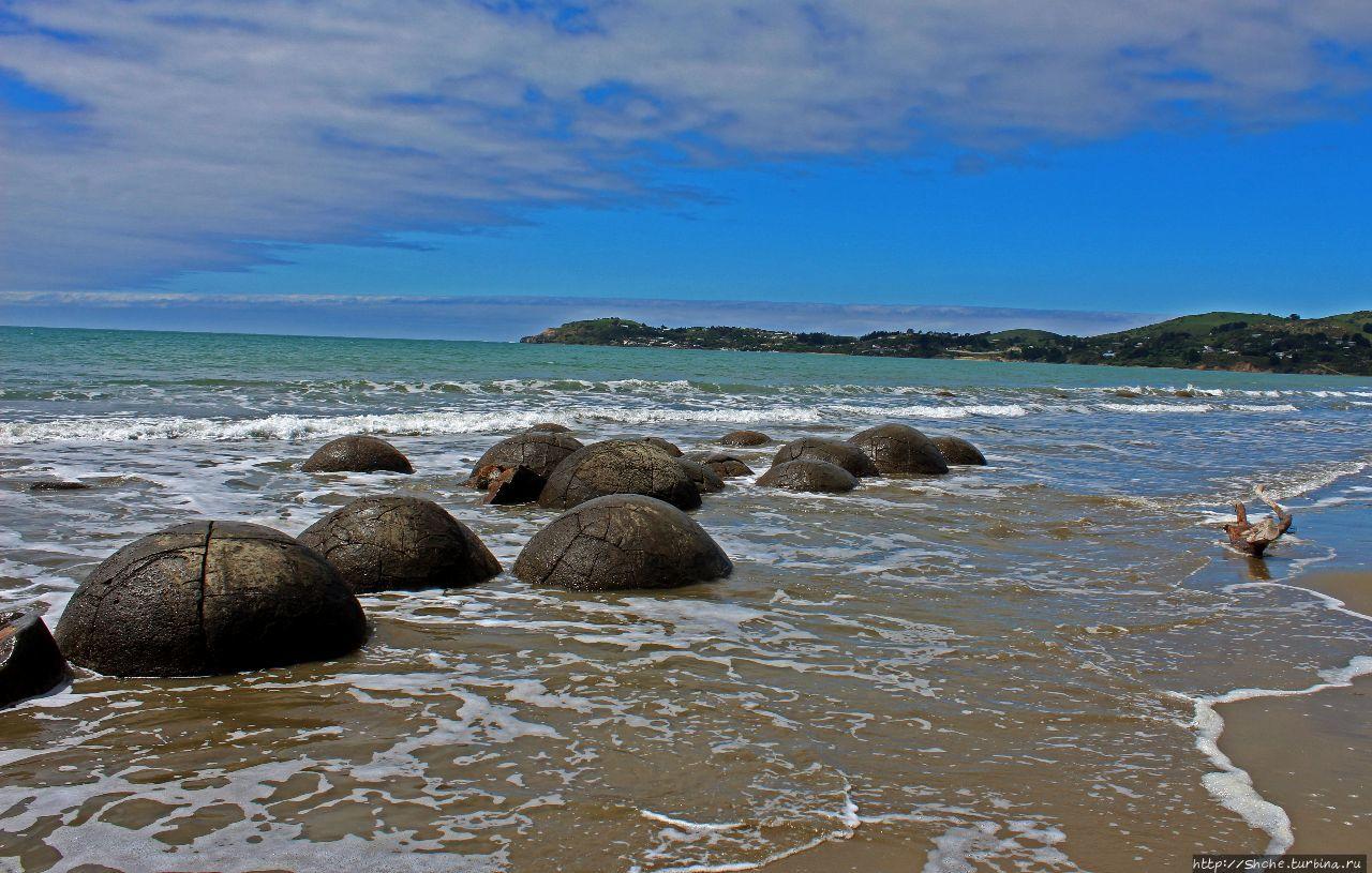 Булыжники Моэраки Моэраки, Новая Зеландия