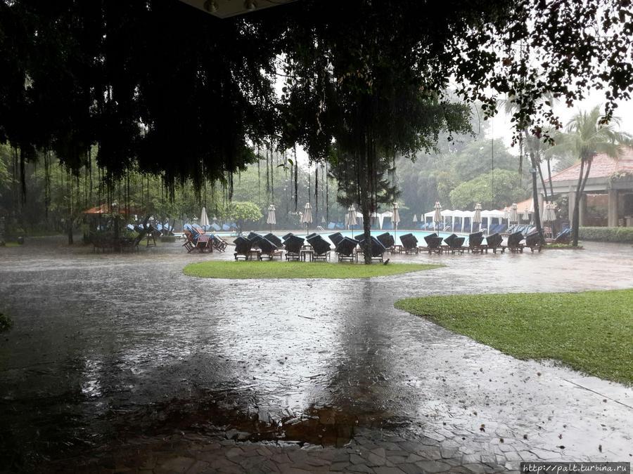 Вид на бассейн в ливень.