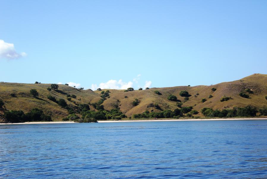 Организация экскурсии на остров  Комодо.