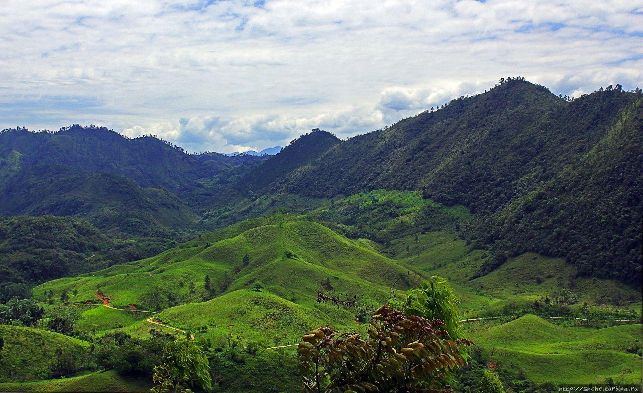 Гватемала. Зелено!