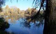 Парк усадьбы Марфино