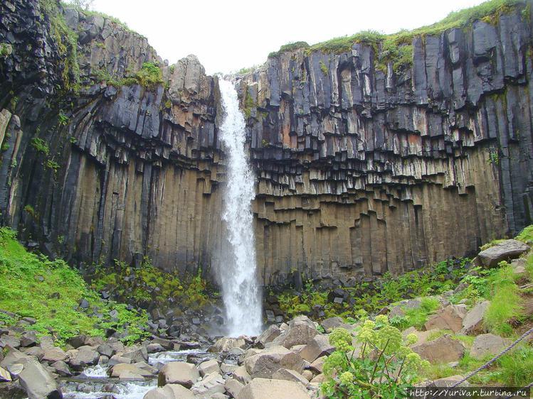 Водопад ОргАн