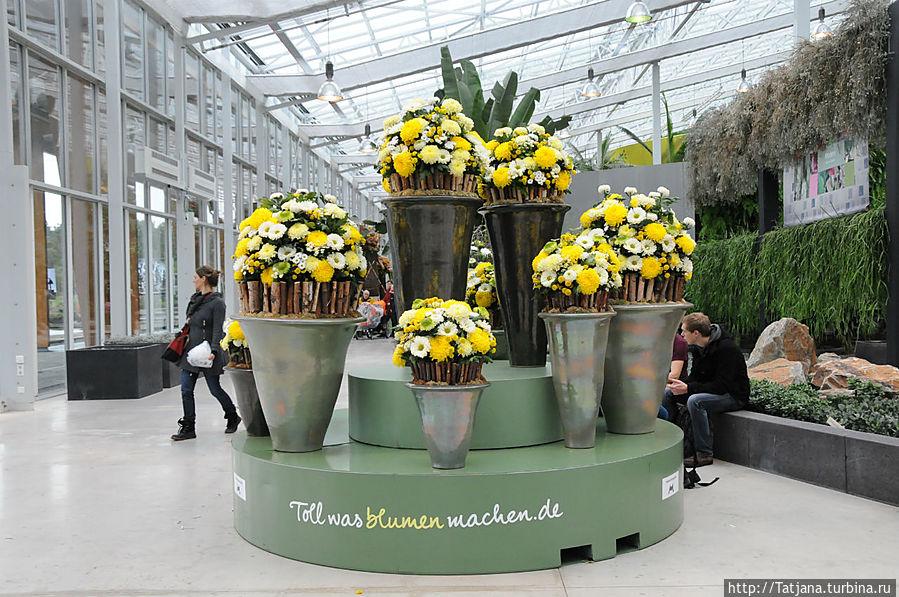 Выставки цветов в голландии