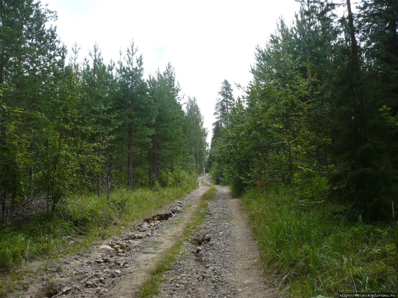 Артиллерийская батарея на горе Сарсуинмяки Сулкава, Финляндия