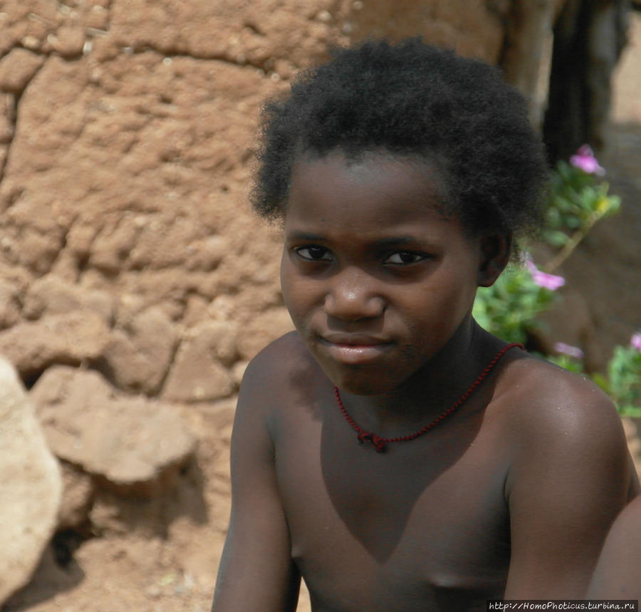 Жизнь и типажи кома Тчамба, Камерун