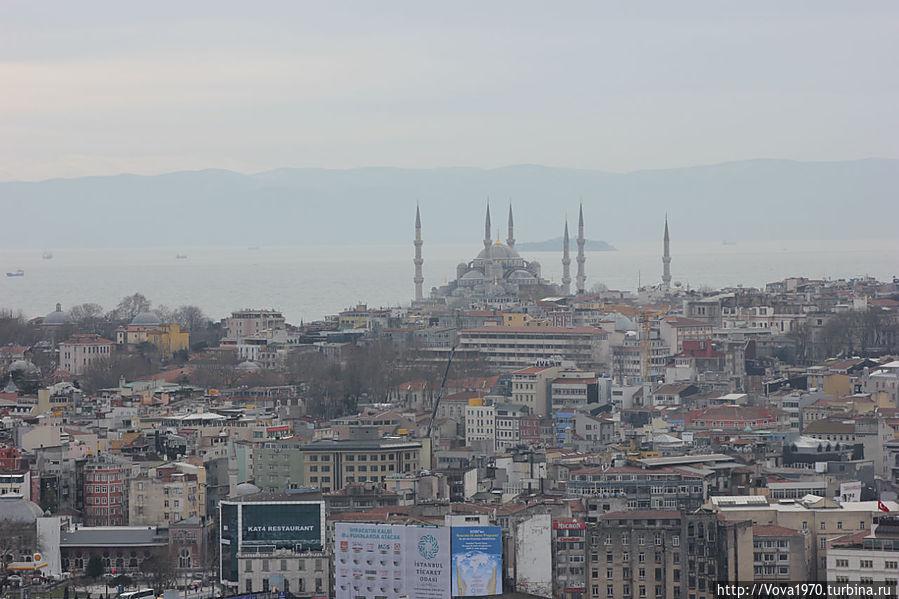 Вид на Голубую мечеть.