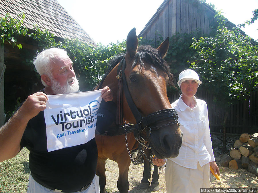 Ханси (Канада), флаг виртуального сообщества и лошадь Юлия.