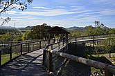 Мосты над вольерами с хищниками. Очень классное решение. Видишь животных почти в естесственной среде.