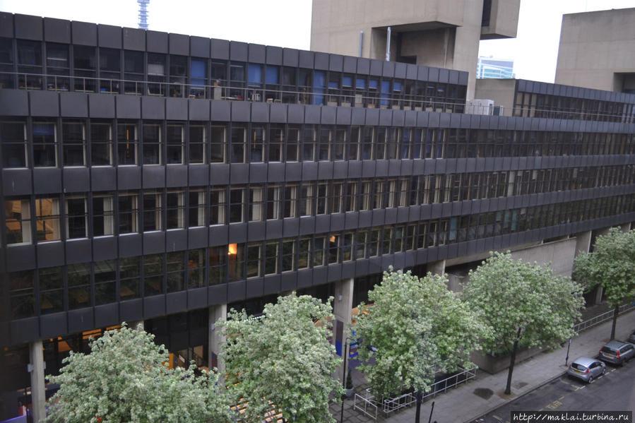 А из нашего окна... Один из корпусов Лондонского университета.