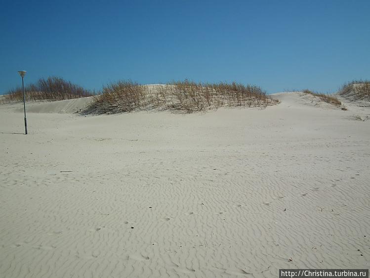Люблю такие дюны. Они соз