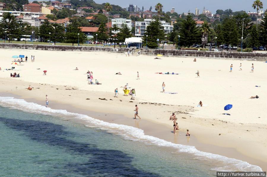 На пляже Куджи — чистейший песок Сидней, Австралия