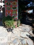 У одного ресторанчика Шириндже (Şirince) вот такие оригинальные клумбы