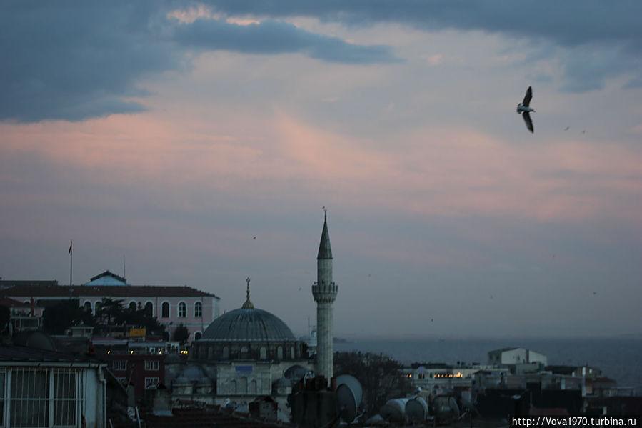 Мечеть Соколлу Мехмет Паша в начале вечера.