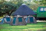Наши палатки в кемпинге Eureka Camping Park and Chalets