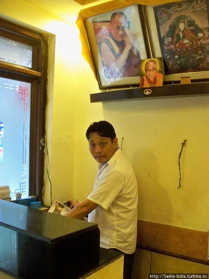 Администратор кафе