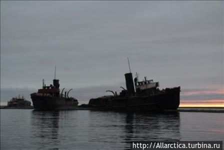 китобойного барка «Харальд
