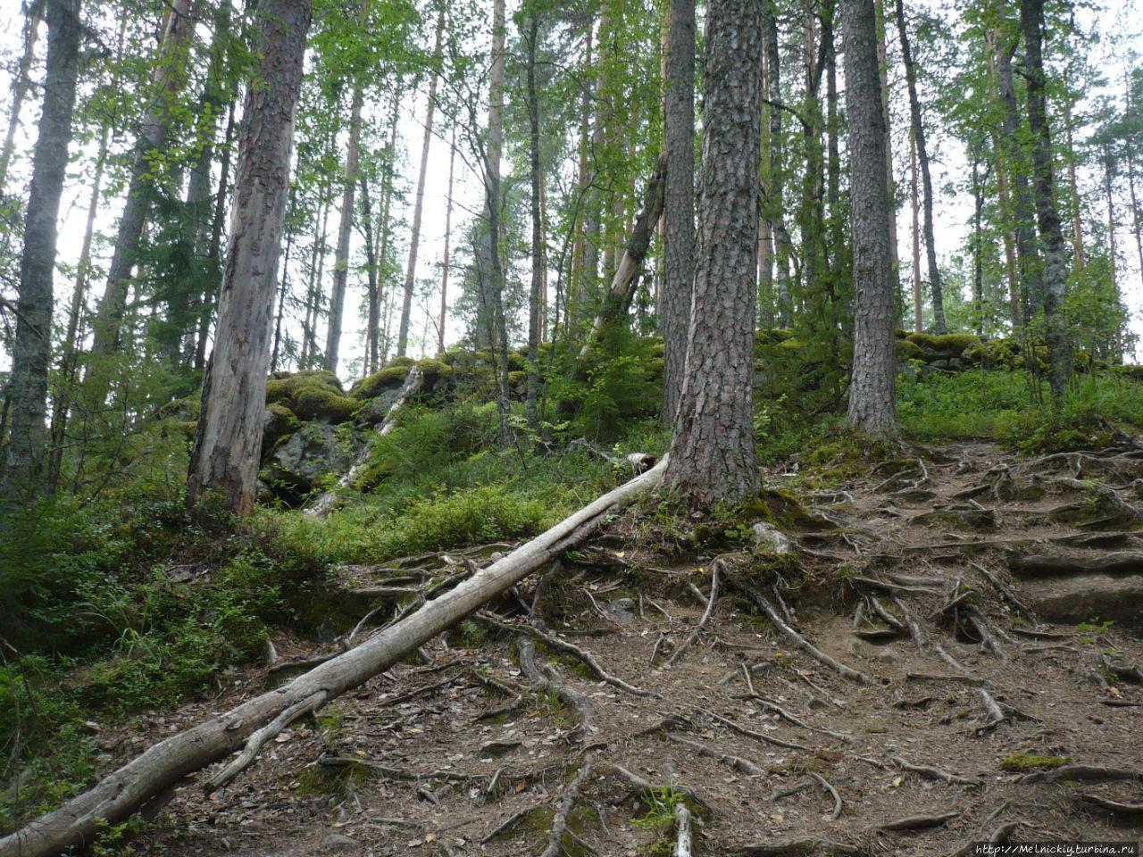 Гора Линнавуори Сулкава, Финляндия