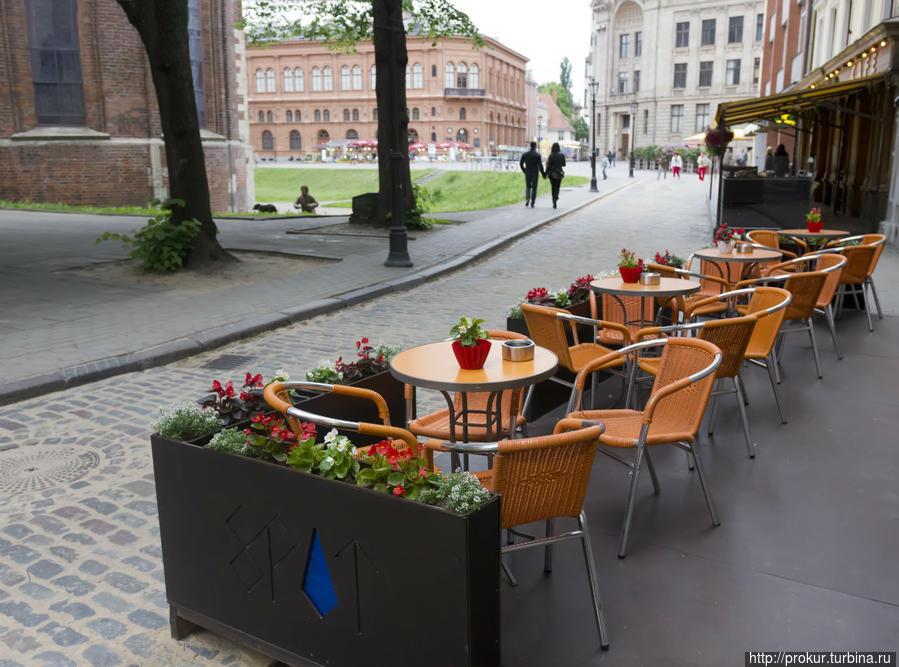 Кафе с видом на домскую площадь