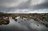 Городская свалка. Простирается на километры и она уже сформировала целую экосистему из крыс, чаек, ворон и т.п. живности.