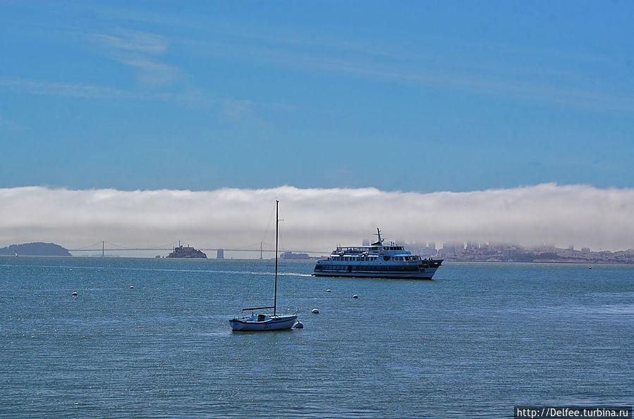 В Саусалито солнце, а Сан-Франциско окутан туманом
