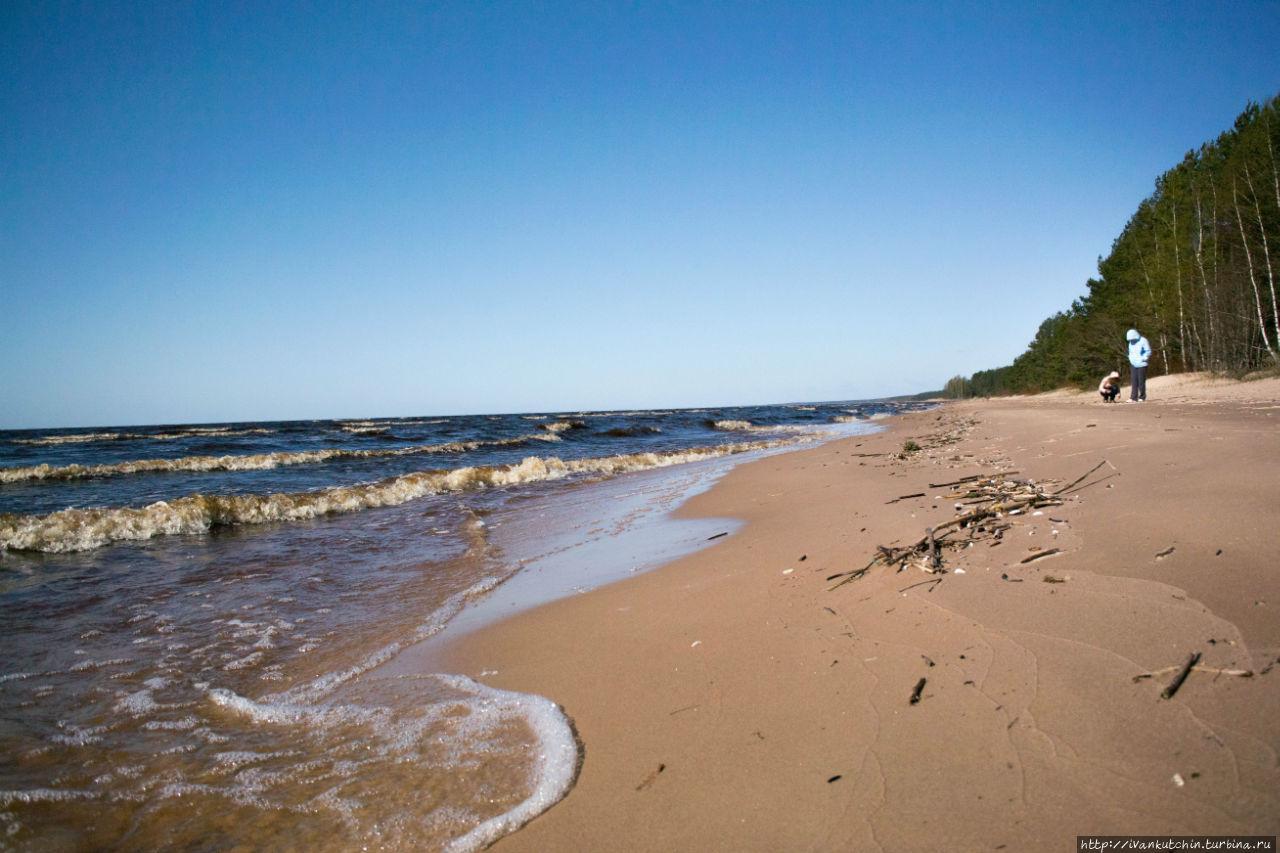 Картинки по запросу чудское озеро эстония