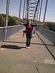 мост над рекой Сож