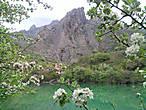 ...В Зеленогорье чувствуется особая... духовная атмосфера... особенно у озера...