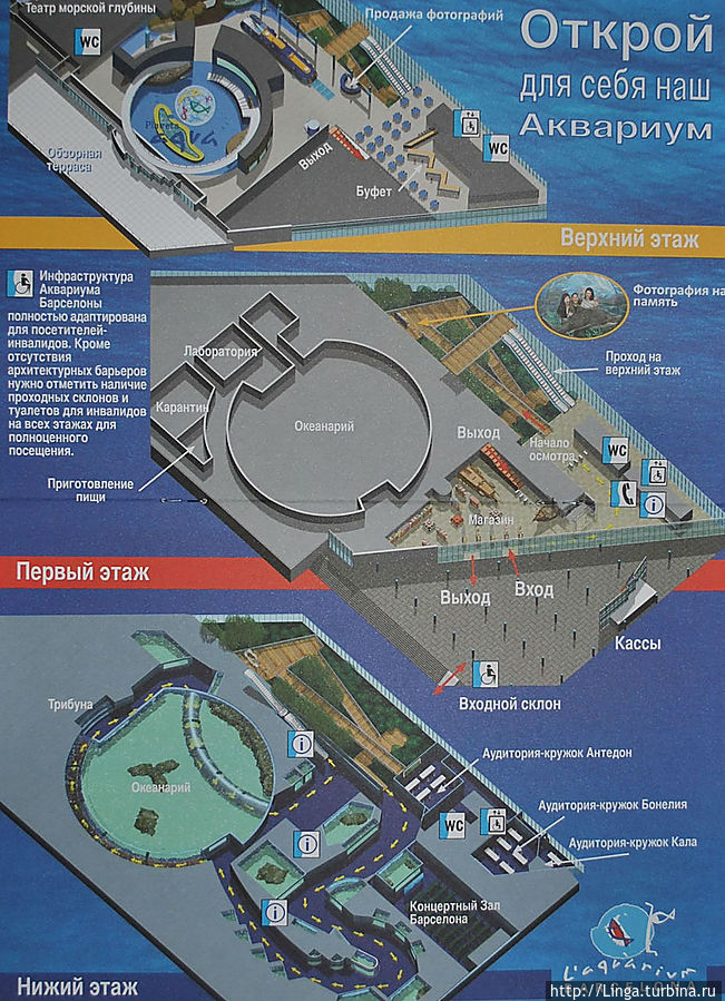 План Аквариума — фото из путеводителя