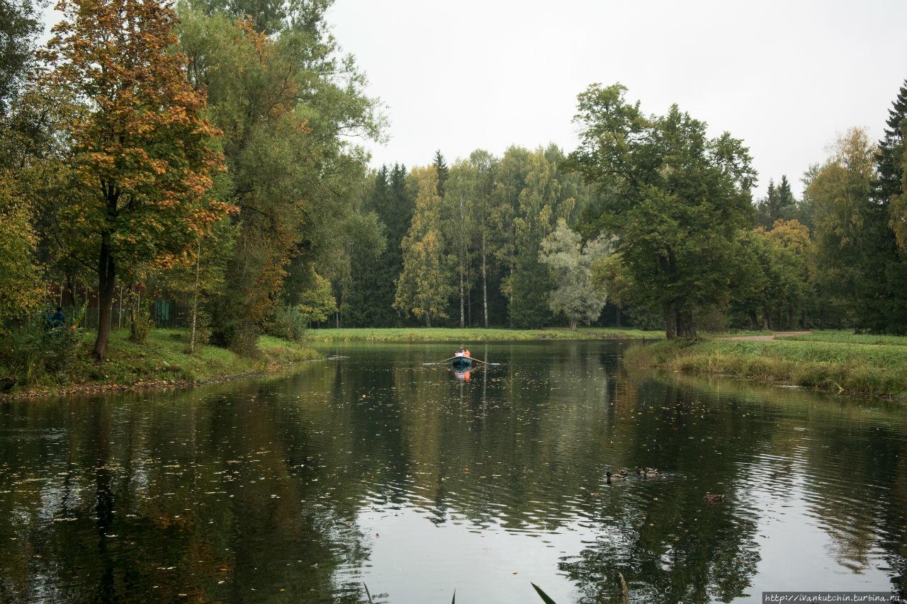 Павловская осень Павловск, Россия