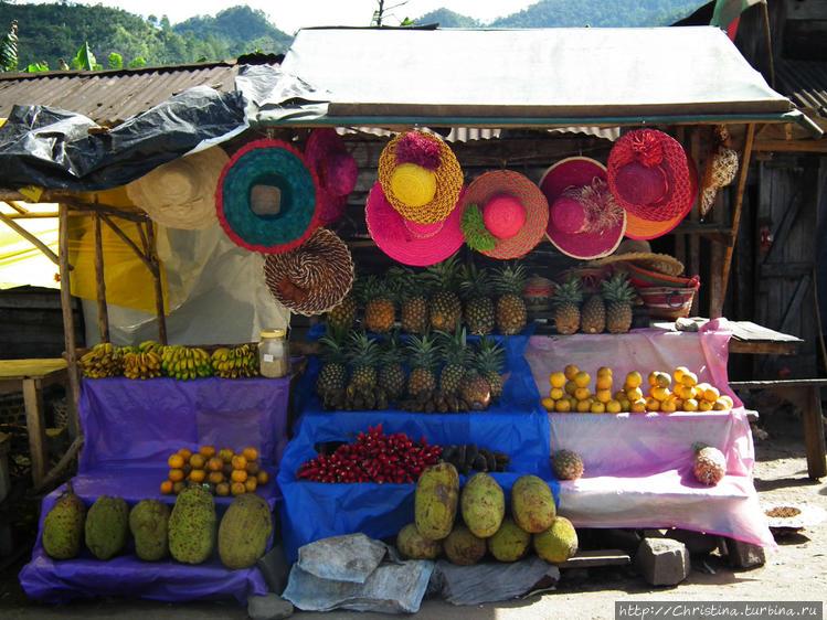 Красочная фруктовая лавка