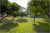 Очень даже приятный парк, где на удивление чисто. Похоже охрана здесь хорошо за всем следит...