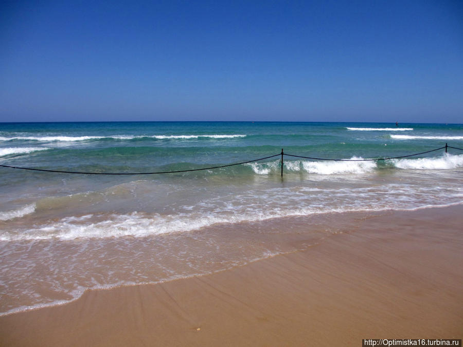 В некоторых местах вход в море закрыт. Но места для купания всем хватает.