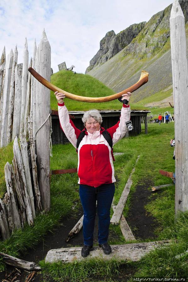 На берегу Атлантики можно найти ребра китов Хёфн, Исландия