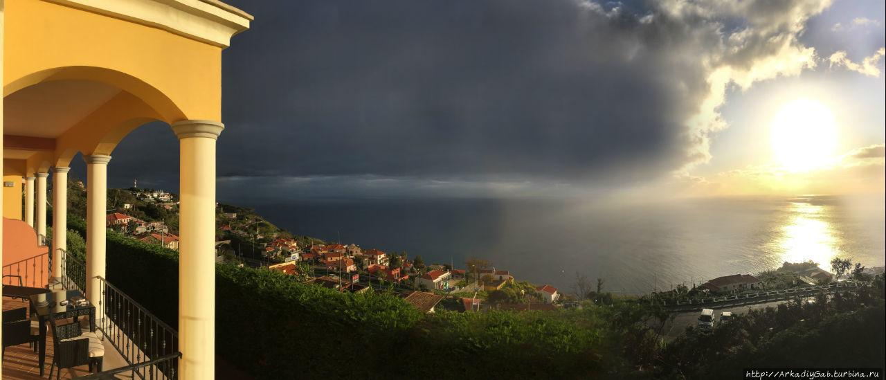 Мадейра. Весь покрытый зеленью, абсолютно весь… Фуншал, Португалия