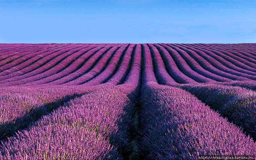 Из Прованса с любовью Прованс-Альпы-Лазурный берег, Франция