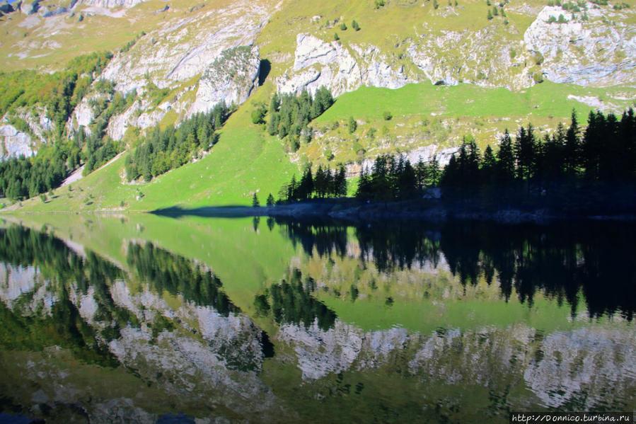 Озеро Альпийское Озеро Зееальпзее (озеро), Швейцария
