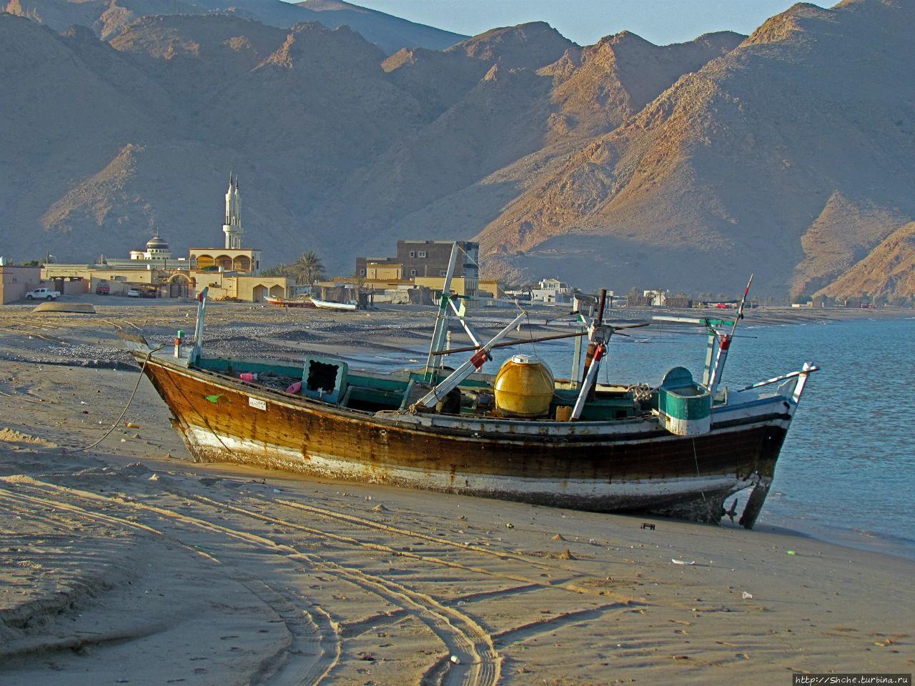 Дибба — ворота в регион оманских фьердов. Дибба-Аль-Байя, Оман