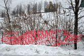 Человеко-щуко-лось, работа в стиле пиксель-скотч-арт под названием «Ни рыба ни мясо» художника Александра Жунева