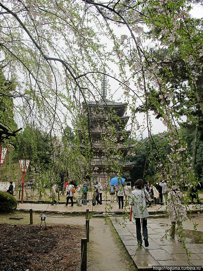 Пятиярусная пагода — самое старое строение в Киото Киото, Япония